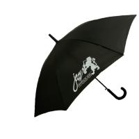 """Зонтик """"Ветер"""""""